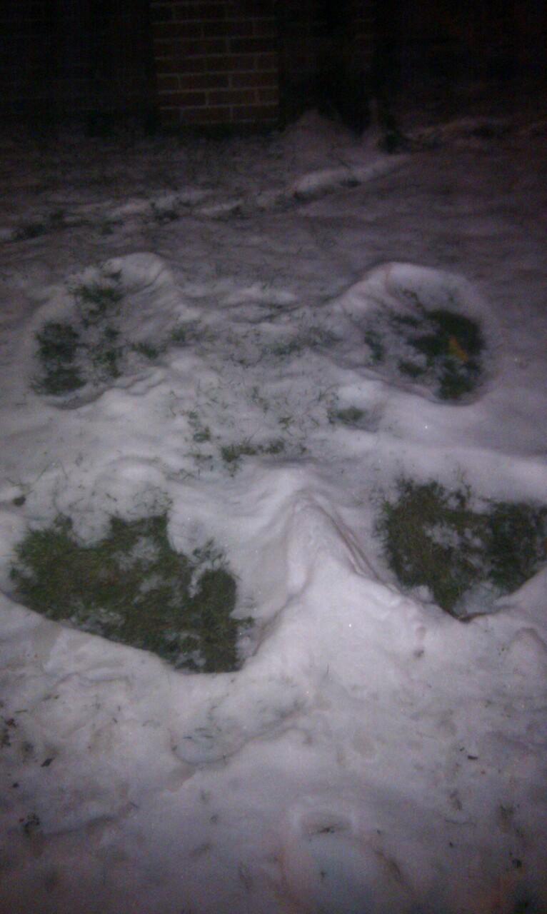 Melting snow angel
