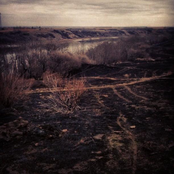 Scorched Prairie